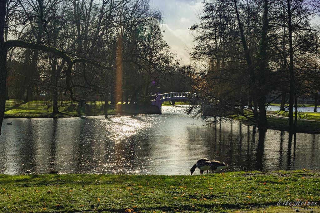 Stadtpark Dezember 2019