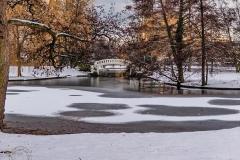 Stadtpark Januar 2019 Monatsende