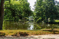Stadtpark Juli 2019 Monatsmitte