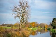 2014 - Niddabrücke - November