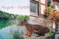 Drei-Monate-Top: Juli-August-September