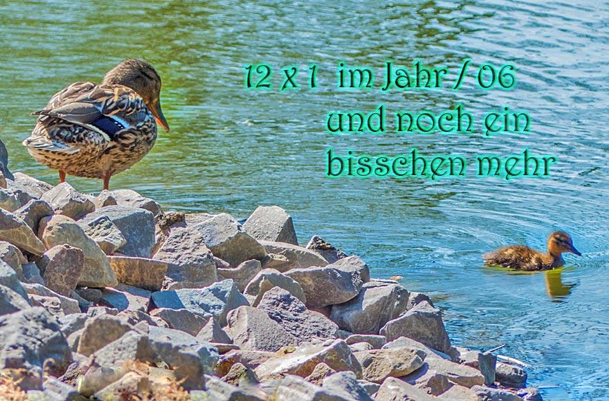 Radl-Tour: Klinikneubau, Stadtpark, Nidda