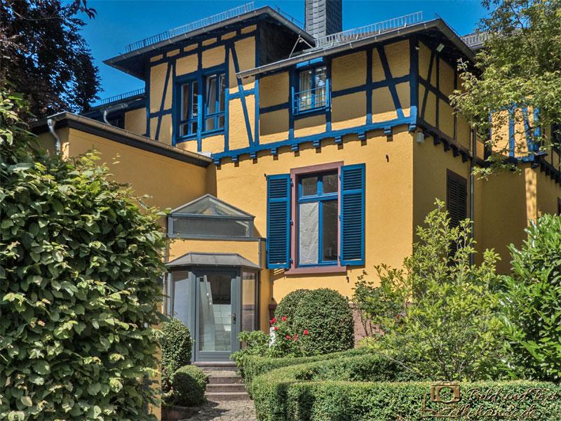 Blaues Haus-Hofheim