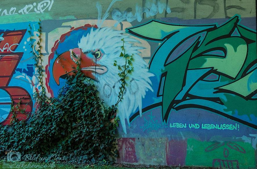 Graffiti mit Adler