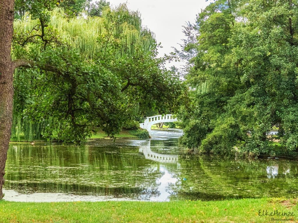 Stadtpark August 2019