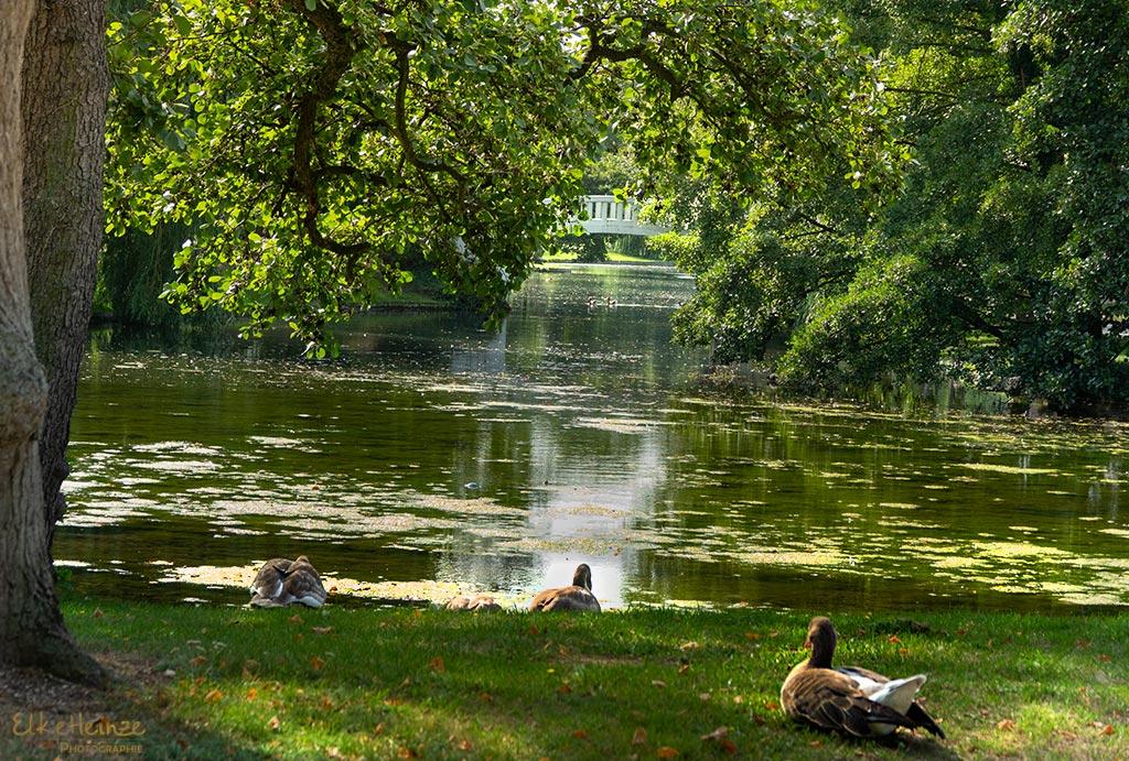 Stadtpark September 2019 Monatsmitte