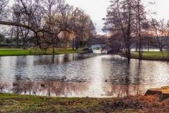 Stadtpark Januar 2019 Monatsmitte