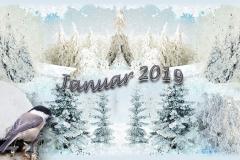 Wunschbild Januar 2019