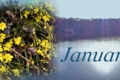 Header Januar 2018