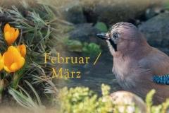 Header Februar-März 2018