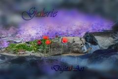 Digital-Art - Galerie