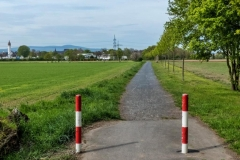 2016 - Feldweg zur Schwanheimer Düne