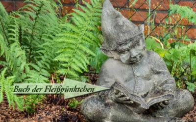 Hausrotschwanz & Taglilien