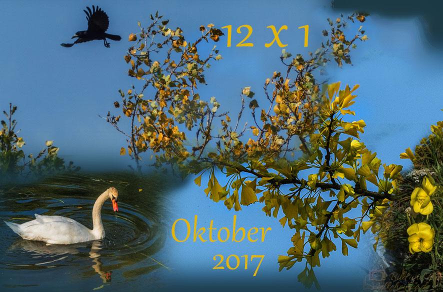 12 x 1 im Wandel – 2017/10