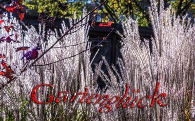 Gartenglück – Vögel & Farben