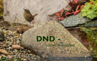 DND – Nix mehr mit schön