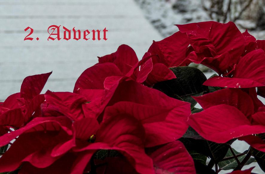 Schnee zum 2. Advent
