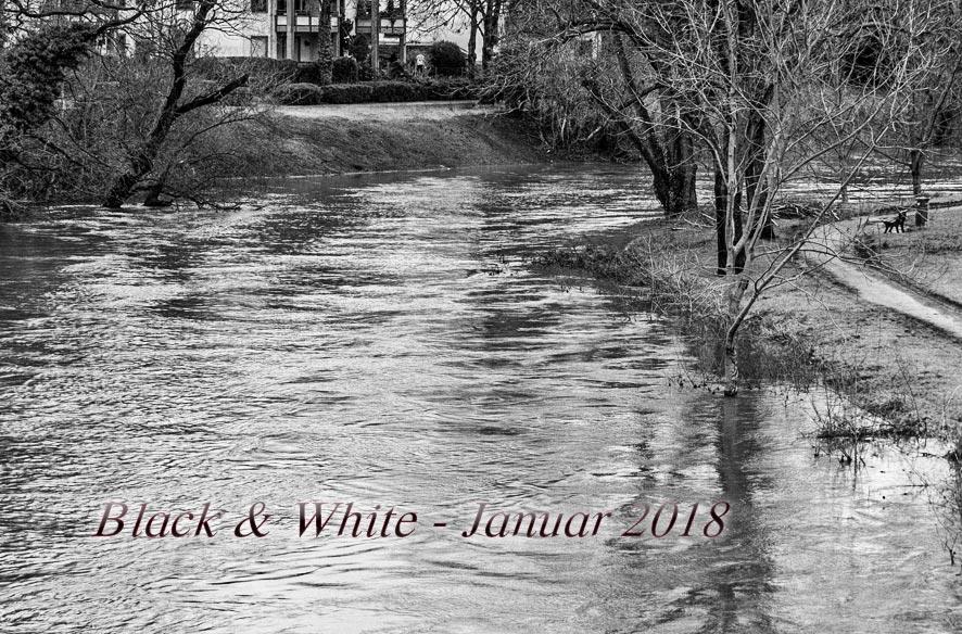 Black & White 2018_01