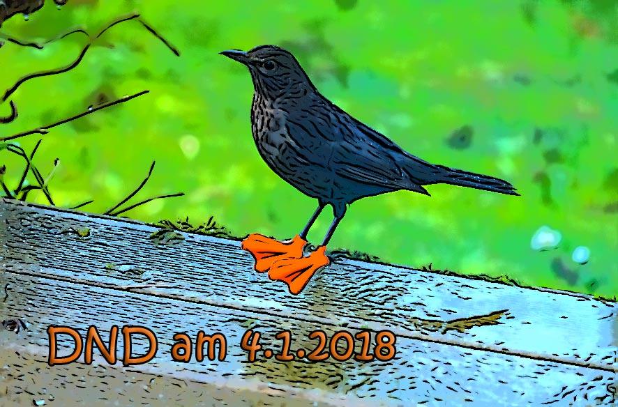 DND – Wasser marsch!