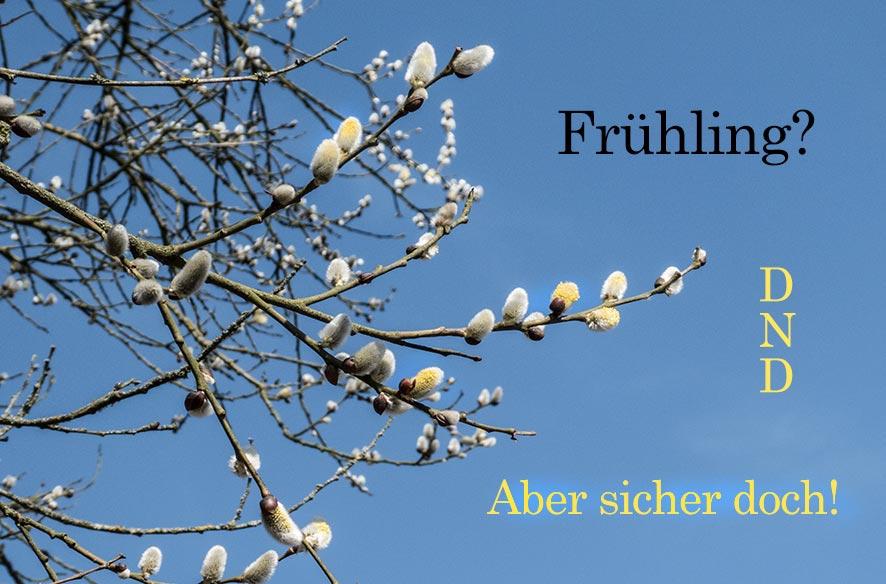 DND – Frühling, etwas flatterhaft