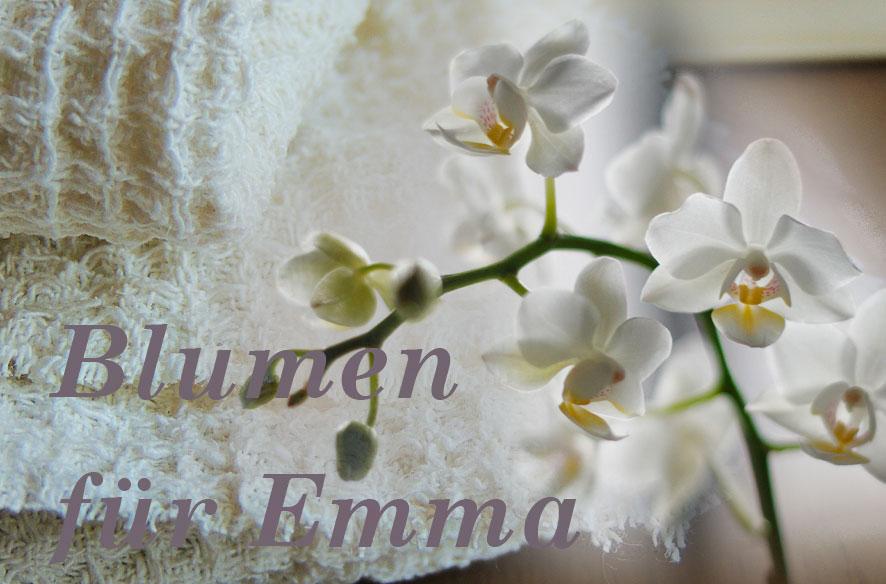 Tell a Story – Blumen