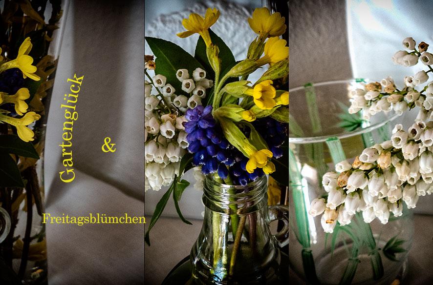 Freitags-Blümchen & Gartenglück