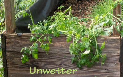 Unwetter – voll erwischt