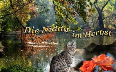 Oktober an der Nidda