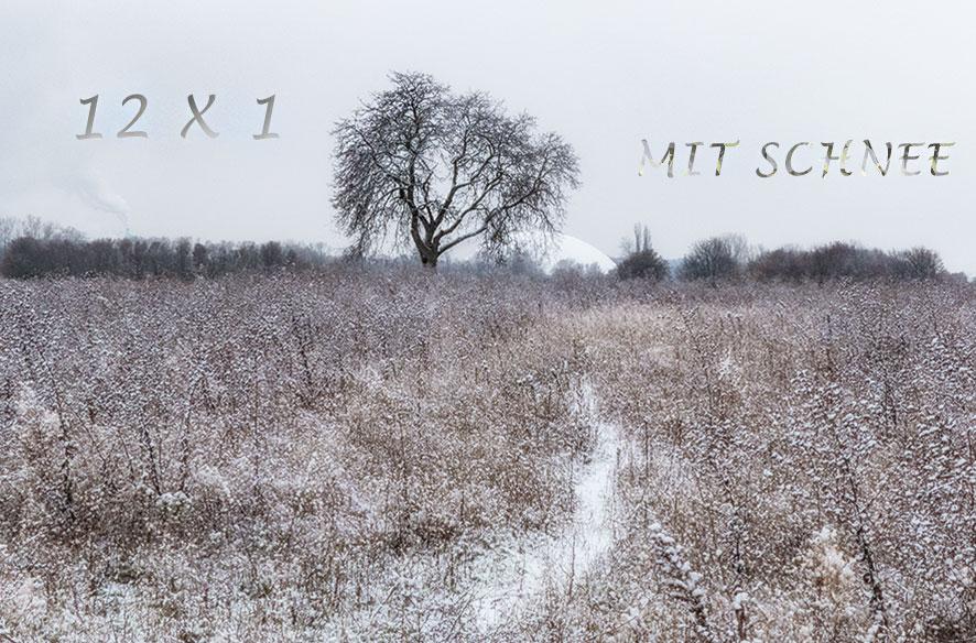 12 x 1 mit Schnee – juchee!