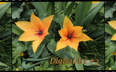 DigitalArt #3