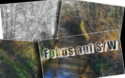 S/W-Fokus – Abi 2019