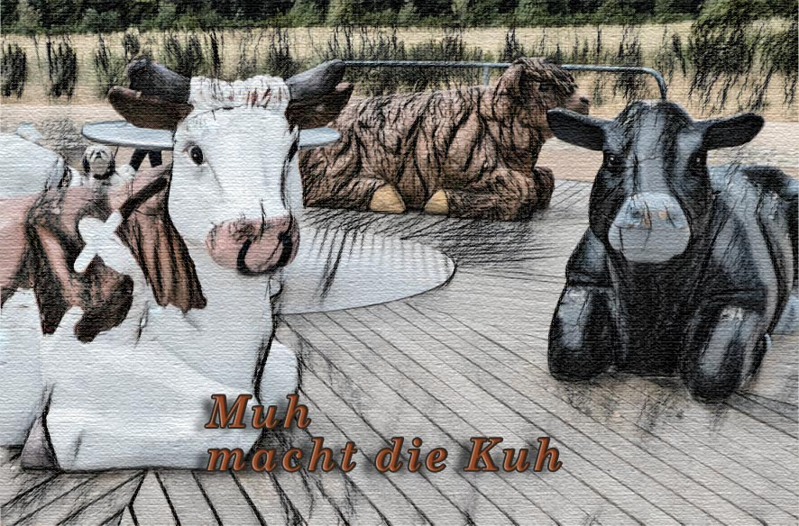 Bei Kühen und Cowboys