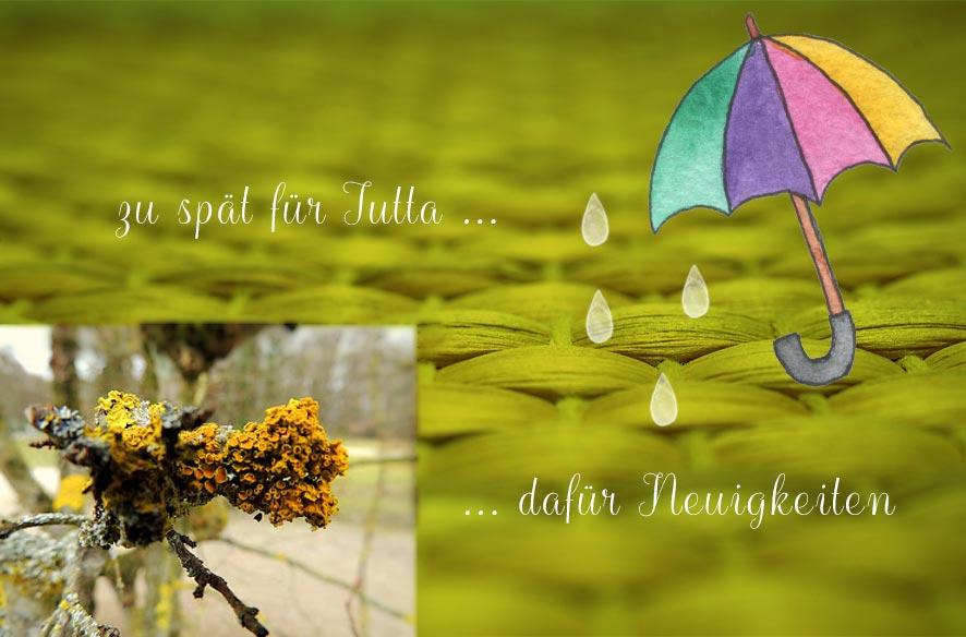 Regenmittwoch, DigiArt & Newsletter