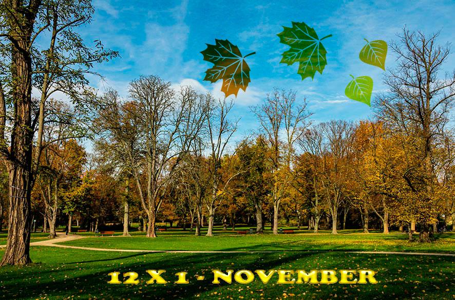 12 x 1 im November 2019