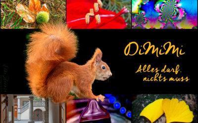 Endlich wieder DiMiMi!