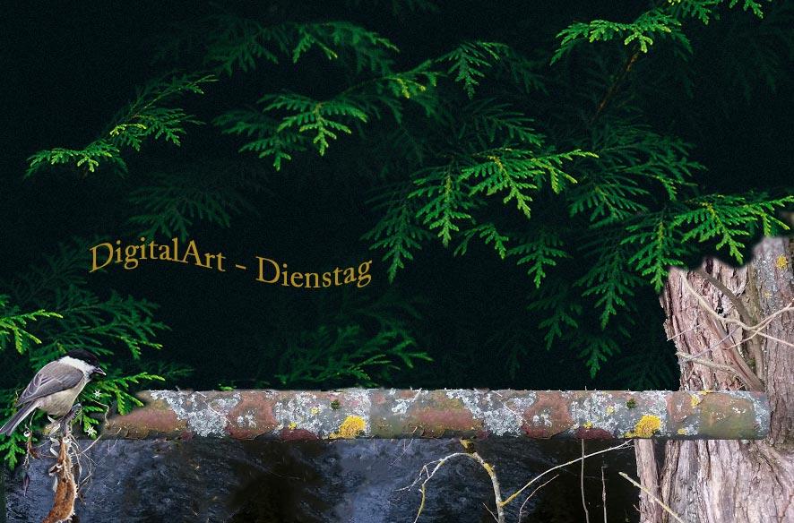 Digi-Art mit Rohr & Flechten