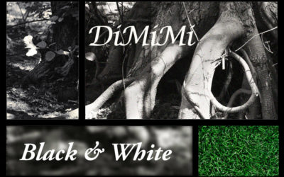 Black & White plus DiMiMi