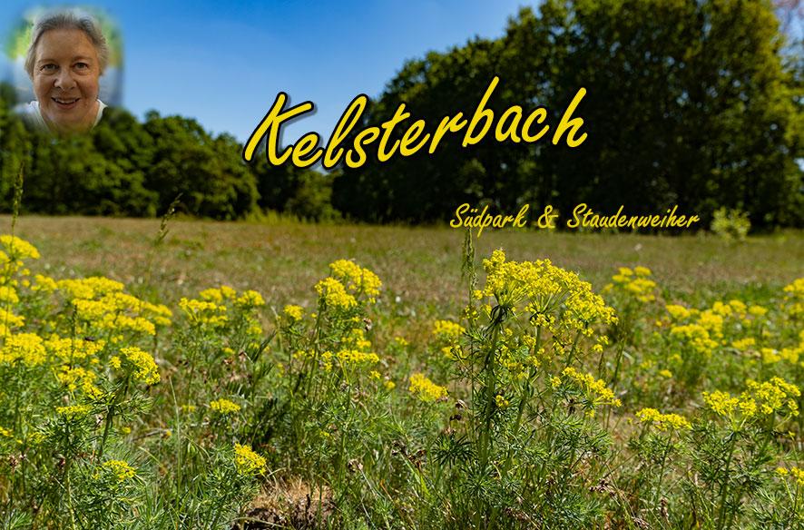 """Mit der """"Neuen"""" in Kelsterbach"""