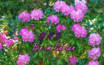 Endlich wieder Lust auf Garten