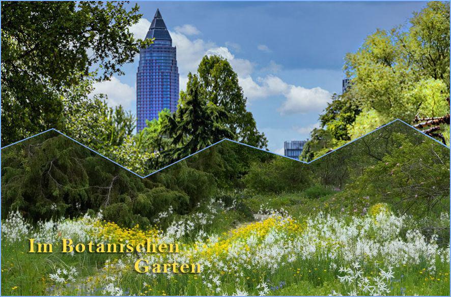 Endlich wieder: Botanischer Garten
