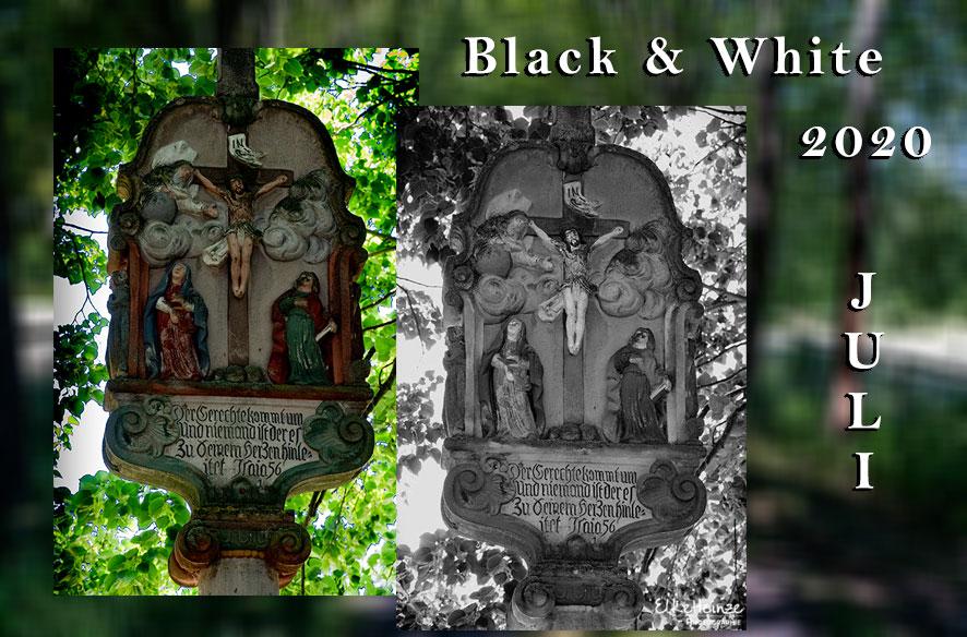 Black & White – ZIB