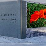 Vorstellung Saal Digital Professional Line