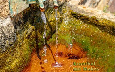 Im Quellenpark Kronthal