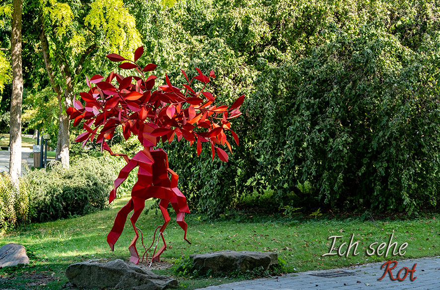 Der Rote Baum im Palmengarten