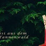 Tessi aus dem Tannenwald