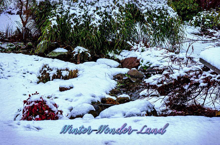 Schnee – juchhe!