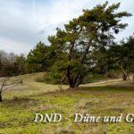 DND - Düne & Garten