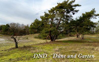 DND – Düne & Garten