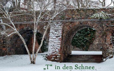 Schnee für Flachlandtiroler