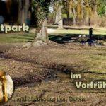 Stadtpark & Frühling im Garten